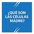 Células Madre.png