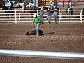 CFD Tie-down roping Blake Ash -3.jpg