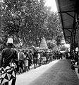 COLLECTIE TROPENMUSEUM Gunungans in een Garebeg-optocht in de kraton te Jogjakarta TMnr 10003401.jpg