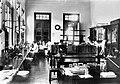 COLLECTIE TROPENMUSEUM Veeartsenijkundige school (Pathologische Anatomie) Indonesië TMnr 10013154.jpg