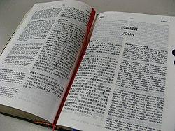CUV BIBLE.JPG
