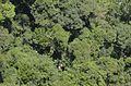CachoeiraCaracol LuliHata 11.jpg