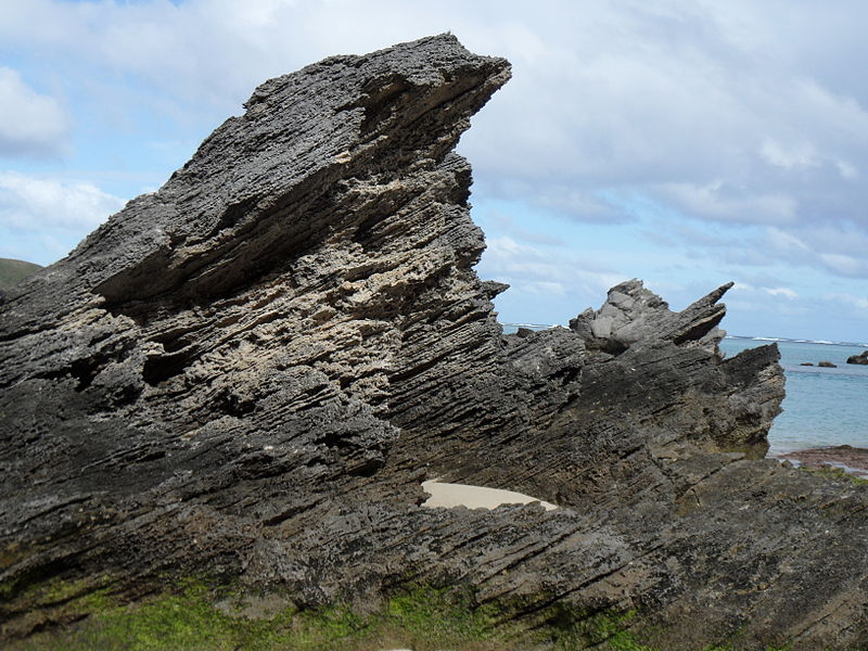 File:Calcarenite karst Lagoon Beach LordHoweIsland 11June2011.jpg