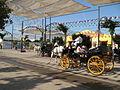 Calesa en la feria de Malaga (1353977815).jpg