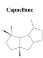 Capnellane.png