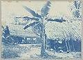 Caraïbendorp bij Albina, Suriname Caräibendorp bij Albina (titel op object), NG-1994-65-2-21-1.jpg