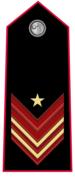 Carabinieri-Appuntato-scelto-qualifica-speciale.png