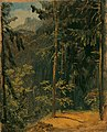 Carl Blechen - Waldweg im Harz - 2412 - Österreichische Galerie Belvedere.jpg