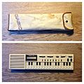 Casio VL-Tone VL-1 & softcase.jpg