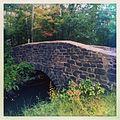 Cat Tail Brook Bridge.jpg