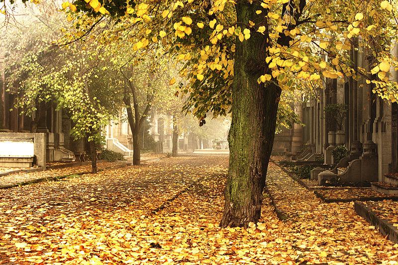 Passeios e lugares diferentes em Santiago tranquilos