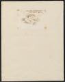 Centrarchus irideus - 1798-1876 - Print - Iconographia Zoologica - Special Collections University of Amsterdam - UBA01 IZ13000072.tif