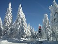Cesta na Klínovec -2 - panoramio.jpg