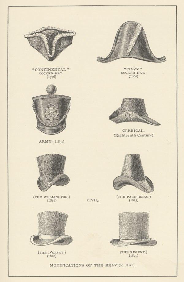 Chapeaux en peau de castor