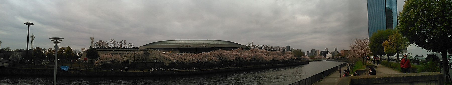 Cherry Blossoms of Osakajo Castle (5).jpg