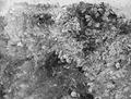 Cholades. Rum XLIII A, offergropen med pinjikottar in situ, detalj. Soli - SMVK - C03630.tif