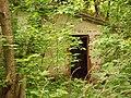Chornobyl 2013VictoriyaSantmatovaDSCN1417.JPG