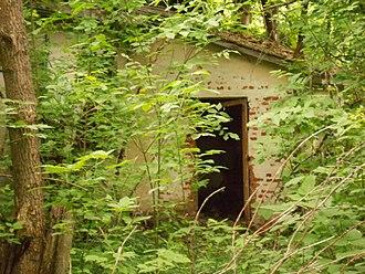 Involuntary park - Vegetation reclaiming houses in the zone of alienation around Chernobyl.