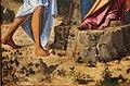 Cima, madonna dell'arancio, 1496-98 ca., da s. chiara a murano 03.JPG