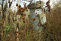 Cimitirul Afurisit satul Lehliu pe malul lacului cruce de piatra 01.JPG