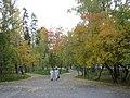 City garden IMG 4900.jpg