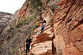 Climbing up to Angels Landing (Zion National Park) (3443193731).jpg