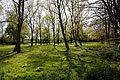 Close (enclosure) Magdalen Laver Essex England 1.jpg
