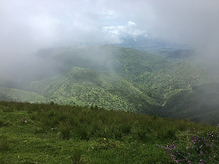 Clouds kissing the mountains of Obudu Clouds kissing the mountains of Obudu.jpg