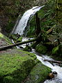 Coal Creek Falls 04051.JPG