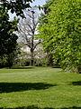 Compiègne (60) Parc du château 09.JPG