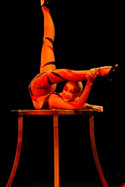 definition of contortion