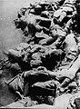 Corpses in the Sava river, Jasenovac camp, 1945.jpg
