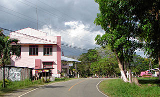 Cortes, Bohol Municipality of the Philippines in the province of Bohol