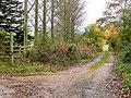 Cotswold Way at Hailes - geograph.org.uk - 1550475.jpg