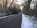 Cowfold Lane - geograph.org.uk - 1638250.jpg