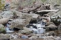 Creek near Cunningham Falls - panoramio.jpg