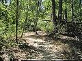 Crowleys Ridge State Park Dancing Rabbit Trail Paragould AR 03.jpg