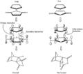 Cyclopentadiene Maleic Anhydride Diels Alder.png