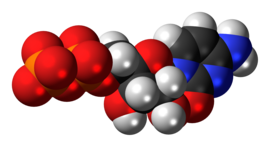 Cytidine diphosphate anion 3D spacefill.png