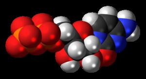 Cytidine diphosphate - Image: Cytidine diphosphate anion 3D spacefill
