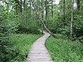 Dūkštų sen., Lithuania - panoramio (42).jpg