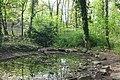 DD-Bienertgarten-Teich2.jpg