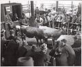 Dairy cows in the sale ring at the Warragul cattle sales, Victoria, (3) (6174090732).jpg