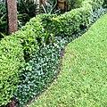 Daniel Pavon Cuellar Gardening Gardens.jpg