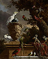 De menagerie, Melchior d' Hondecoeter, ca. 1690 - Rijksmuseum.jpg