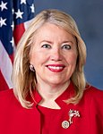 Debbie Lesko, official portrait, 115th Congress.jpg
