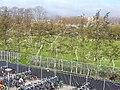 Delft- 2006 - panoramio - StevenL.jpg