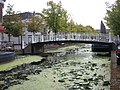 Delft - Rapenbloembrug.jpg