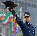 Desfile Militar Conmemorativo del CCV Aniversario del Inicio de la Independencia de México. (21448566726).jpg