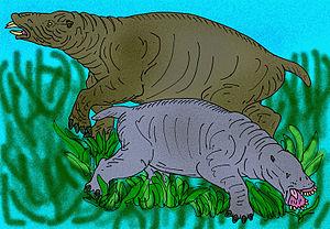 Desmostylia - Restoration of Desmostylus and Paleoparadoxia